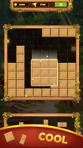 Block Puzzle Wood 2019 NEW 1.8 screenshots 3
