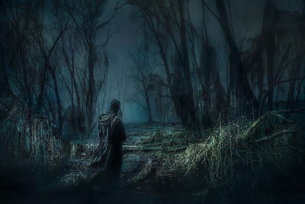 ...mi ritrovai per una selva oscura... di davide_giovanni_volpi