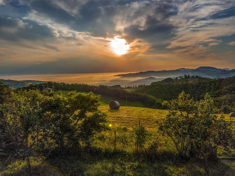 alba estiva di Cinzia_torelli