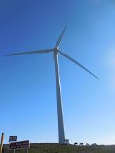Photo: Uno de los muchos gigantes de la Sierra de Carondio