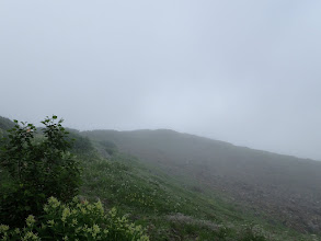 オンタデと上部稜線