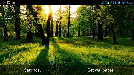 出色的自然动态壁纸
