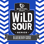 DESTIHL Wild Sour Series: Blueberry Gose