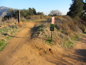 Photo: Junction of Colby-Dalton Trail (left) and Colby Trail
