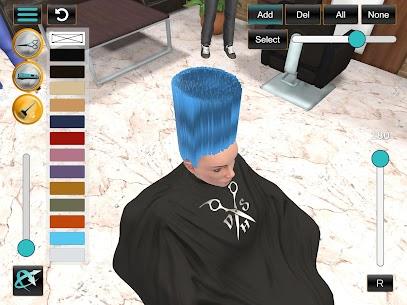 Digital Hair Simulator 2