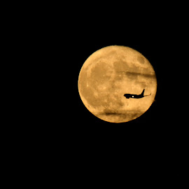 to the moon by Roseann Jech - Transportation Airplanes