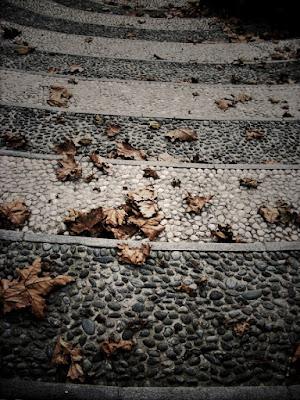 Novembre.... di patatrach