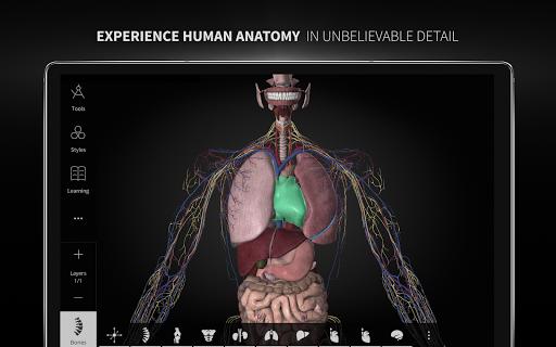 Anatomyka - 3D Human Anatomy Atlas 1.8.5 screenshots 9
