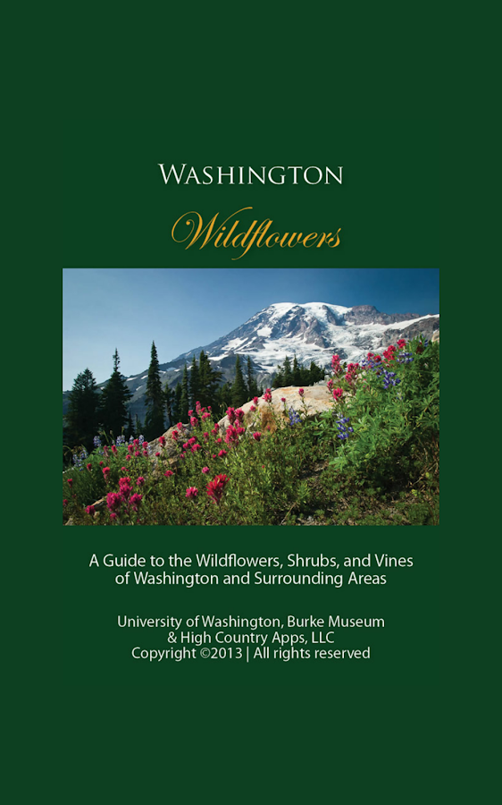 Washington Wildflowers - screenshot