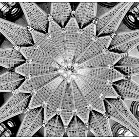 Starburst Ceiling  by Richard Ho - Buildings & Architecture Architectural Detail ( pwc74: black & white interiors, black and white, interior, building, monotone )
