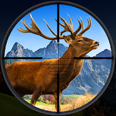 Open Season - Deer Hunting Wildlife