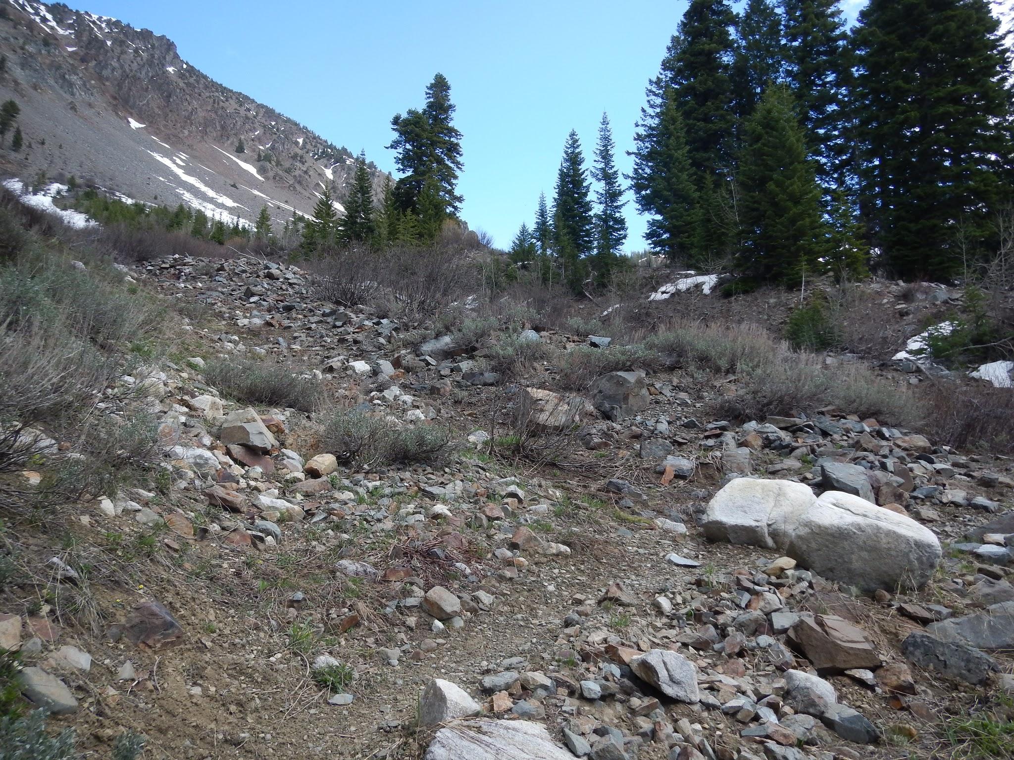 Photo: The trail climbs onto a rocky plateau