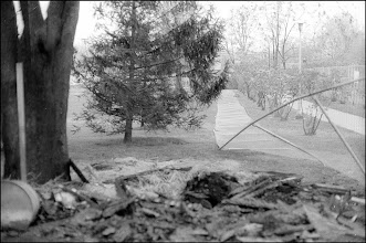 Photo: KSU wooden archery storage shed was burned by students escaping police tear-gas after students' ROTC attack.