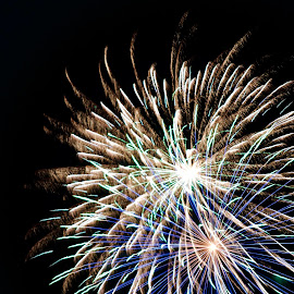 Mixed by Savannah Eubanks - Public Holidays July 4th ( firework, independence day, fireworks, pyrotechnics, colors )