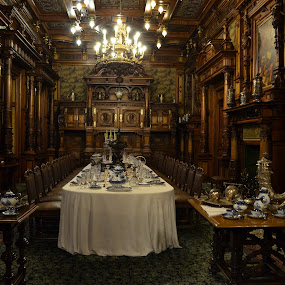 Peles castle Sinaia by Delia Straut - Buildings & Architecture Other Interior