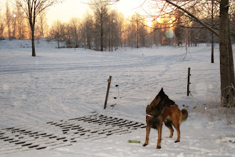 Photo: Med Landeryds golfbana i bakgrunden.