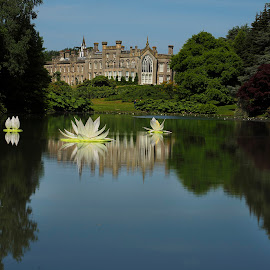 sheffield park by Gjunior Photographer - Buildings & Architecture Other Exteriors ( historic, nature, landscape )