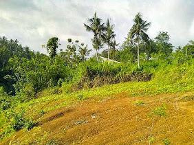 Jual tanah di Ubud Lodtunduh, luas 1960m2, view sungai