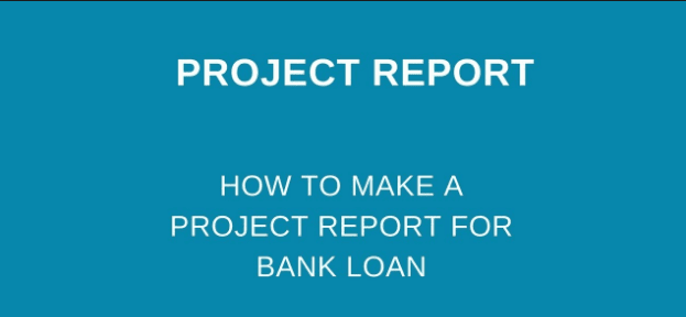 Project Report for Mudra Bank Loan