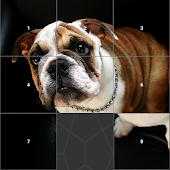 Dog Image Slide Puzzle