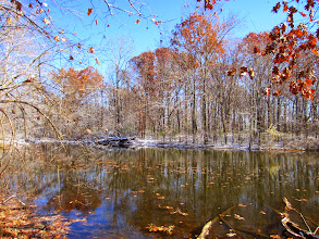 Photo: Firy leaves and snow at a pond at Carriage Hill Metropark in Dayton, Ohio.