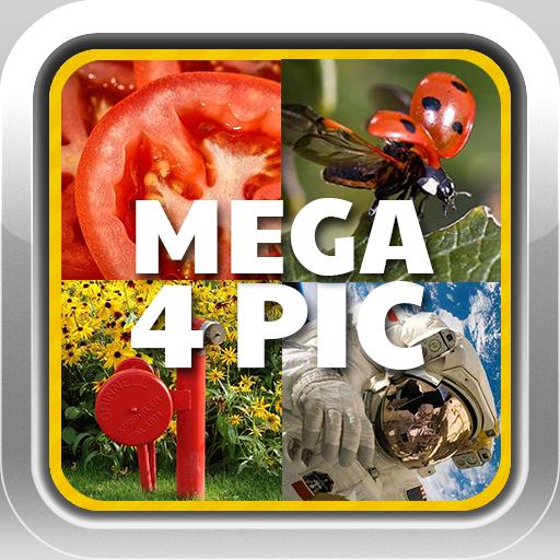 Mega 4 Pic 1 Word Quiz