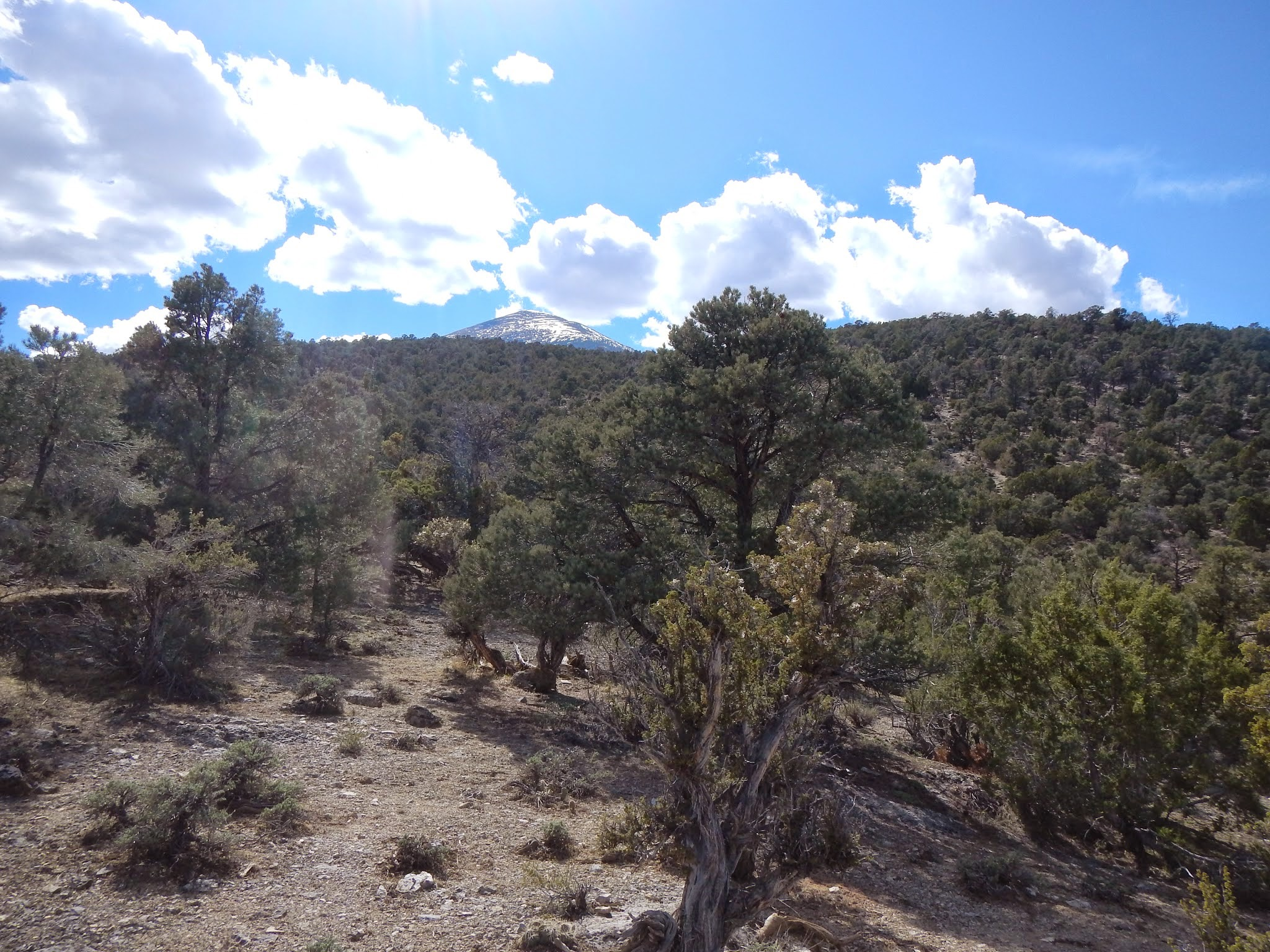 Photo: Our first hike in the park took us through a dry, juniper and sage lined nature trail.