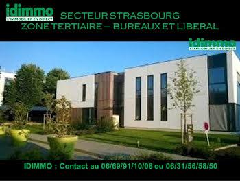 locaux professionels à Strasbourg (67)