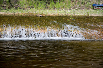 Photo: water flowing out of a spring