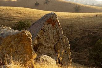 Photo: The Monte - M. WHite