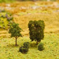 181329 PREMIUM Lövträd 5 st