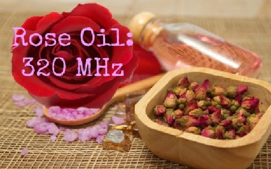 Essential Oils With These Frequencies Might Stop Cancer In Its Tracks