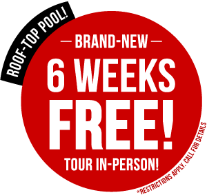 Brand New + Six Weeks Free!