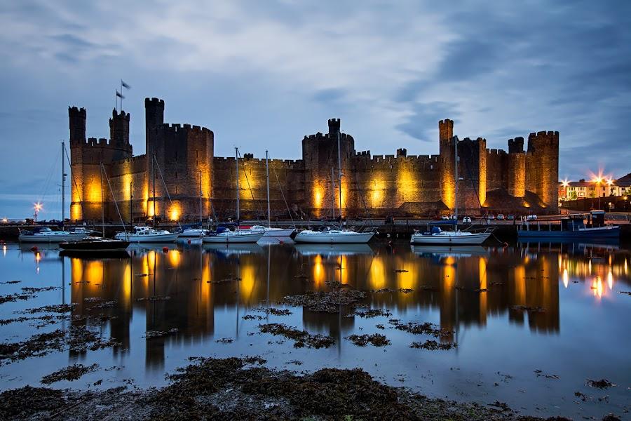 Y Gaer yn Arfon by Neil O'Connell - Buildings & Architecture Public & Historical ( caernarfon, reflection, north wales, twilight, castle )