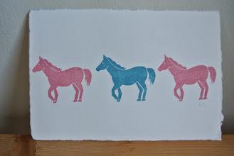Photo: 45 (馬)