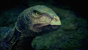 Australia's First 4 Billion Years: Monsters thumbnail