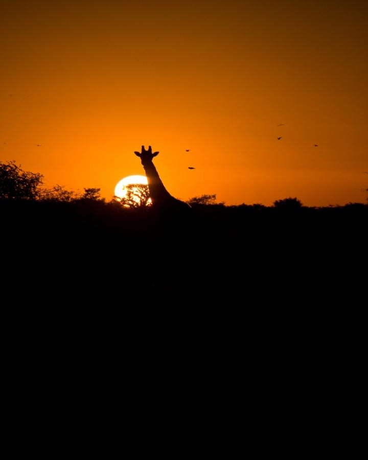 La mia Africa di RobertaCamilli