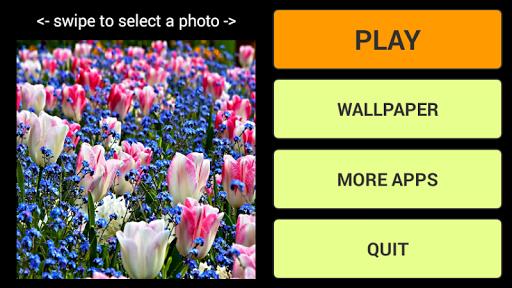 꽃 퍼즐 및 배경 화면