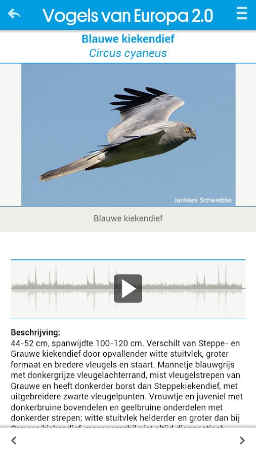 Vogels van Europa - screenshot