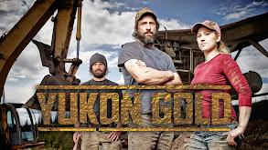 Yukon Gold thumbnail