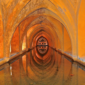 The Real Alcazar, Seville (Spain) by Vinay Tyagi - Buildings & Architecture Public & Historical