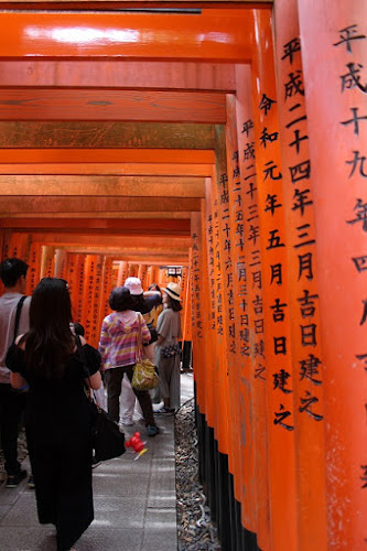 Tra i Torii del Fushimi Inari Taisha  di ni
