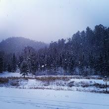 Photo: #winter #snow #invierno #nieve #hiver #neige
