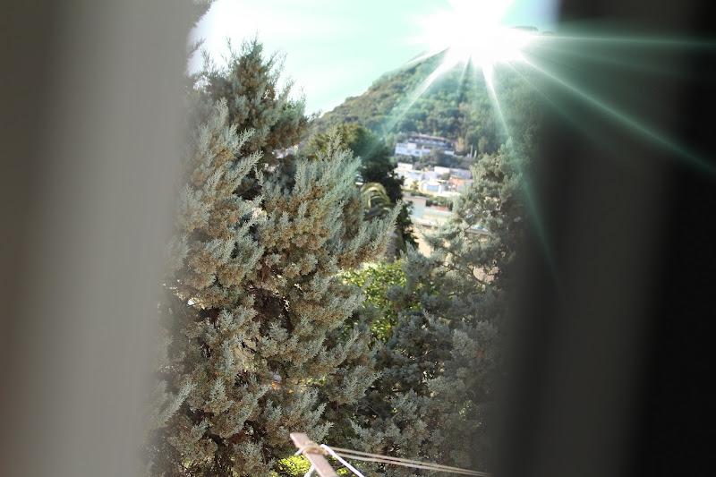 dalla finestra del bagno di FrancescoM