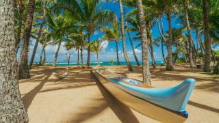 imagen de una canoa en la playa