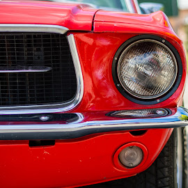Mustang by Mark Luyt - Transportation Automobiles ( red, car, vintage, mustang, racing stripe, sports car )
