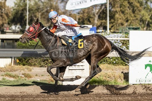 Danita First (Seeking The Dia) se adjudica Handicap (1000m-Arena-CHS).
