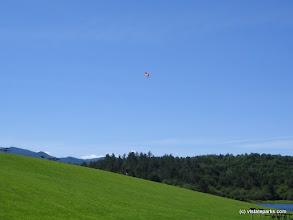 Photo: Flying kites at Waterbury Center State Park