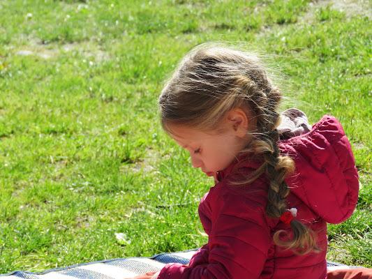 picnic a primavera di barbara68