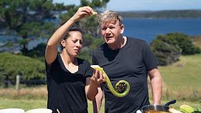 New Zealand's Rugged South thumbnail